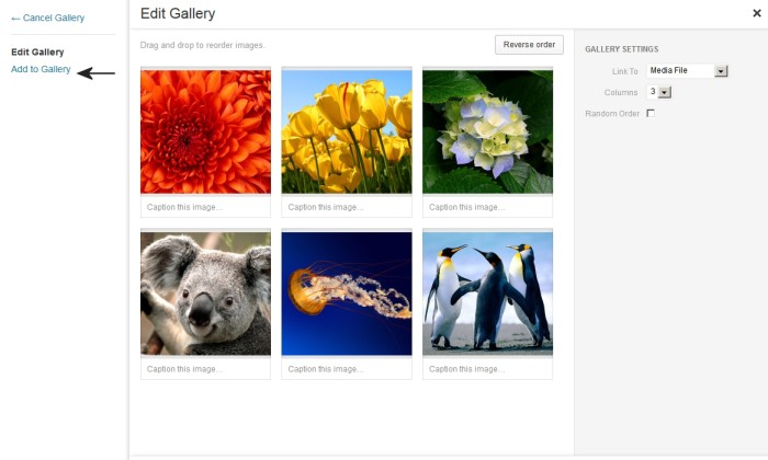 Create Gallery - Add To Gallery