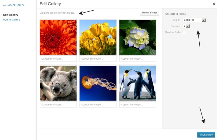 Create Gallery - Edit Gallery